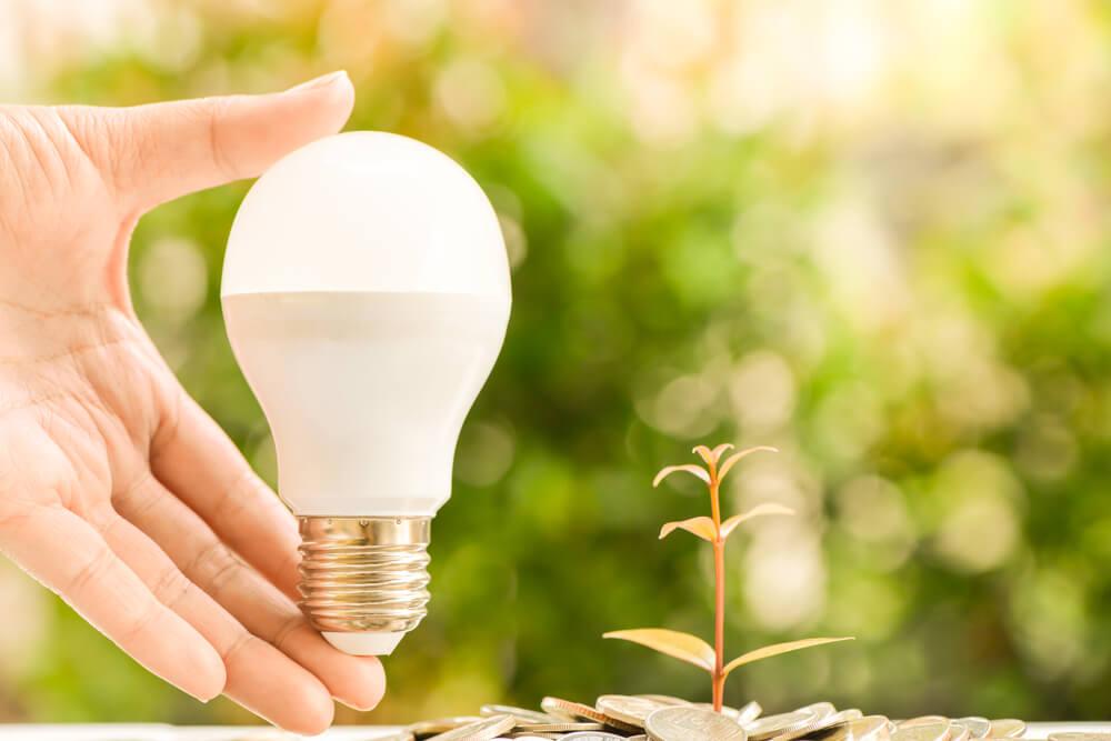 Czym kierować się przy zakupie lamp LED do uprawy